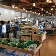 野菜が並ぶ施設内